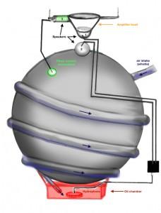 Cetacant-diagram1