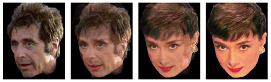 A study on face morphing algorithms